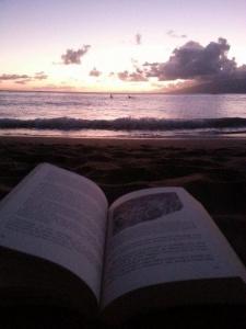 Hawaii Maui kniha
