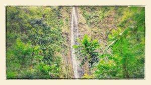 prales maui 100m vodopád